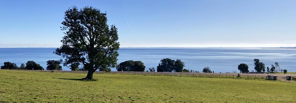 Magnífica parcela con acceso al lago en Puerto Octay